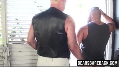 asshole  bareback  bears